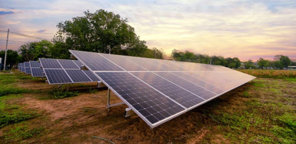 Solar energy generated farm