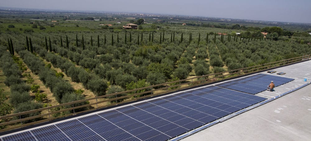 photovoltaic-panels-farm