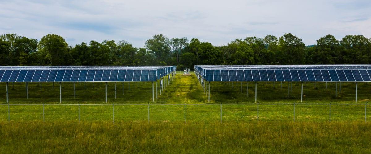 Solar farming solar panels